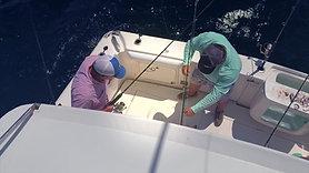 Gulf Fishing 2020