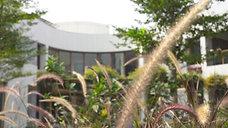 Aranya Villa - OpenIdeas Architects
