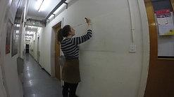 Hadronic Lines II - Daniela Brill