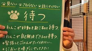 2020_12_5オンライン譲渡会