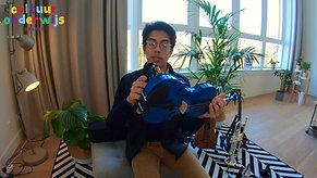 Meester Kaya vioolles 1
