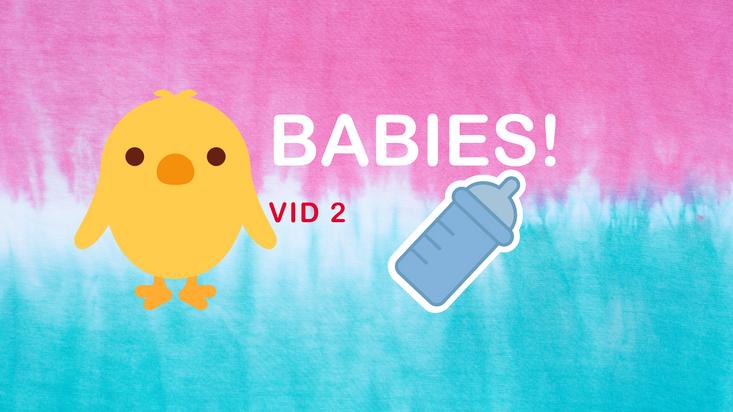 Thrive Babies