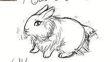 White Bunny in Alice style