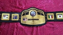 NWA World Championship Replica Belt