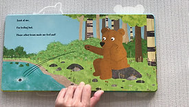 Learn about sizes: The biggest bear in the wood
