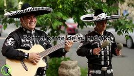 Video Fast México