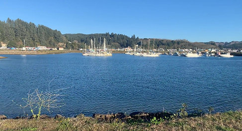 winchester bay 4