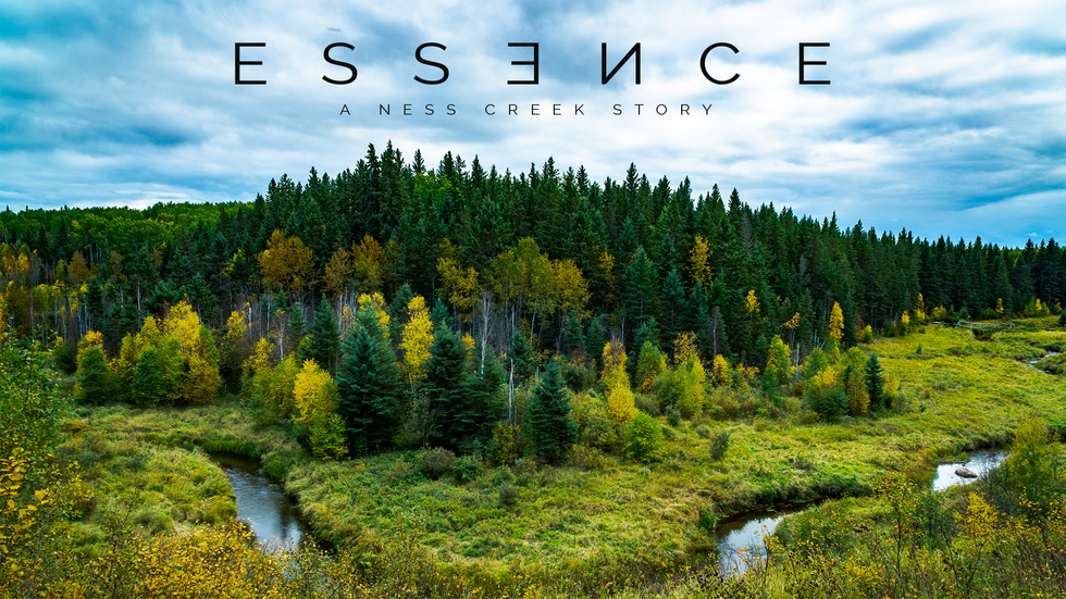 ESSENCE: A Ness Creek Story