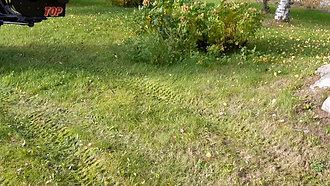 Садовый пылесос и садовый воздуходув
