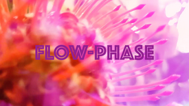 Flow-Phase