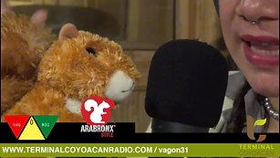 Mi transmisión en vivo