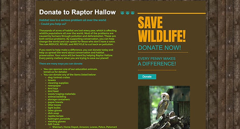 Around Town- Raptor Hallow