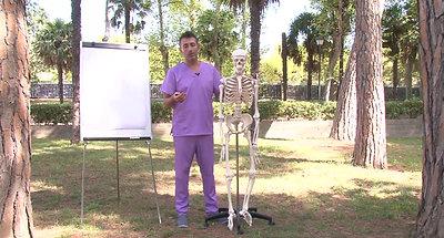 3 anatomia cintura escapular