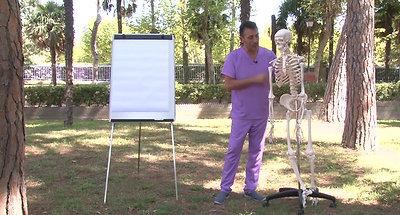 1 Anatomía presentación
