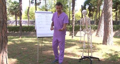 2 anatomia conceptos generales