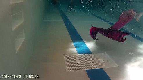 Swimming fun - pink fin