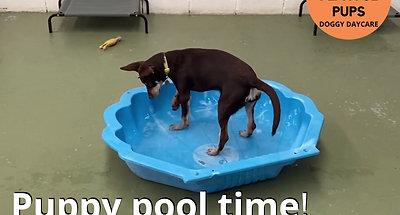 Pool Time (1)