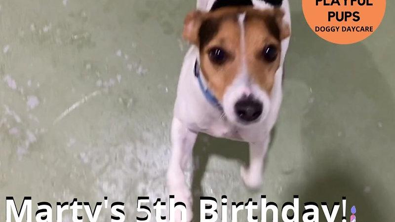 Marty's 5th Birthday! (1)
