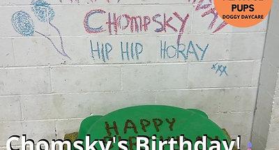 Chomsky's Birthday!