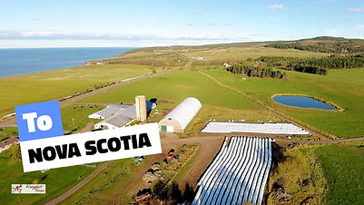 Knoydart Farm  Scotland to NS FB
