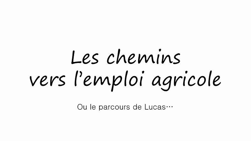 Les chemins vers l'emploi agricole