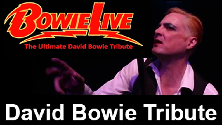BOWIE LIVE-DAVID BOWIE EXPERIENCE