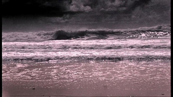 SURFRIDER OCEAN