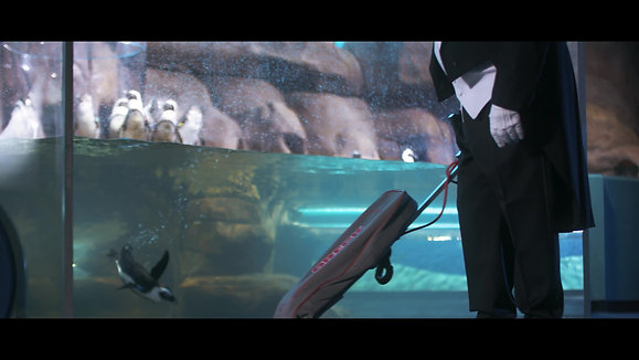 Ripley's Aquarium_TUX