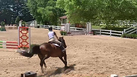 2019 Modified Jumper Double Clear Blue Ribbon Round