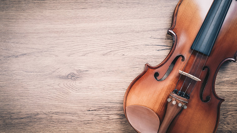 Beginners Online Violin Lessons