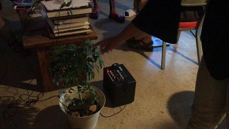 Angry Plant Demo