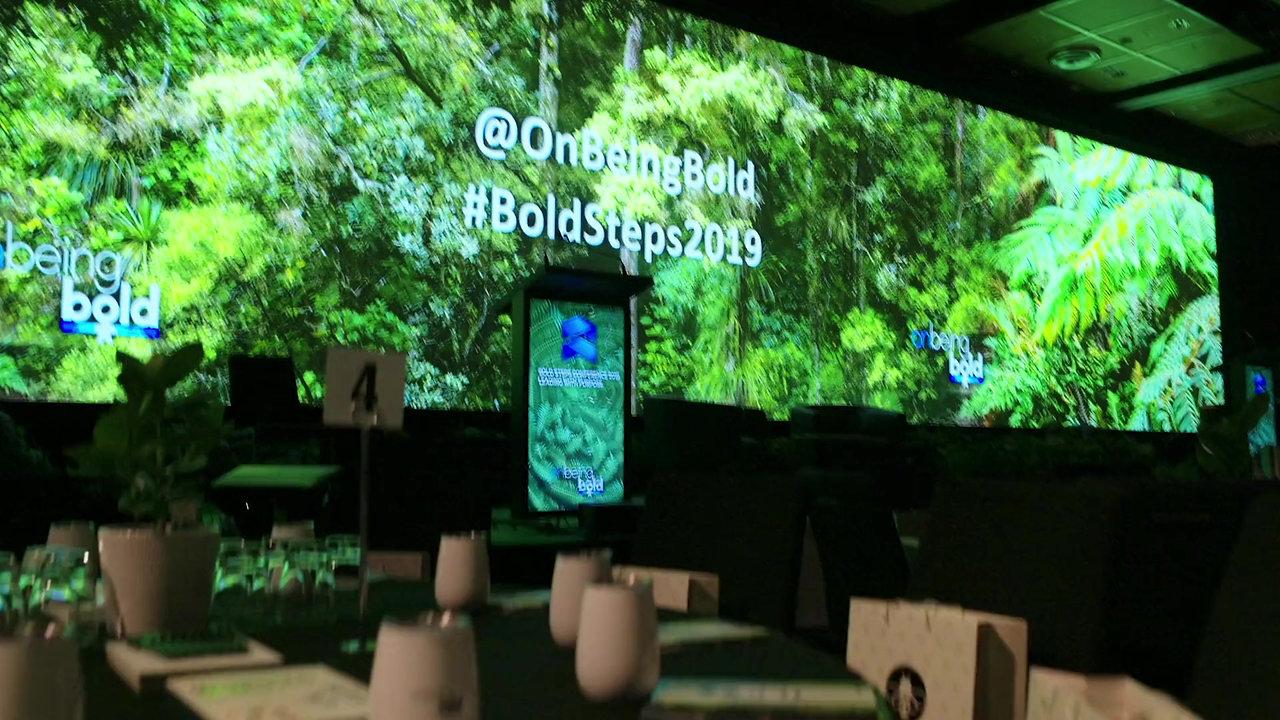 Bold Steps 2019 Conference