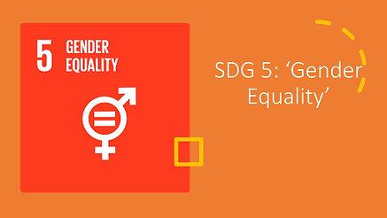 SDG 05