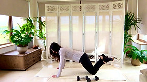 Circuit Pilates-Arms and Core