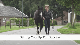 Setting You Up For Success