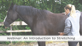Webinar: An introduction to stretching