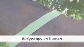 Bodywrap on human
