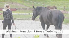 Functional Horse Training 101
