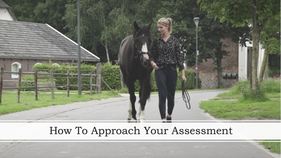How To Approach Your Assesment