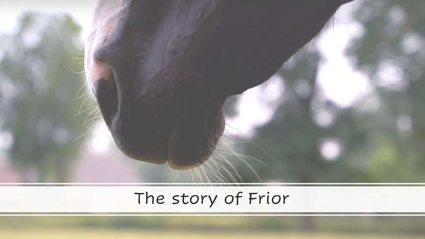 The Story of Frior
