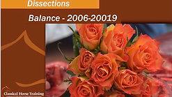 Dissection Case Study: Balans