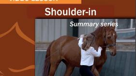 Summary Series: Shoulder-In
