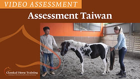 Assessment Blacky Taiwan