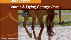 Canter & Flying Change