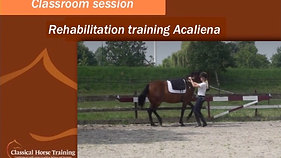 Classroom session - Acaliena