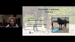 Webinar: Brainwork for horses