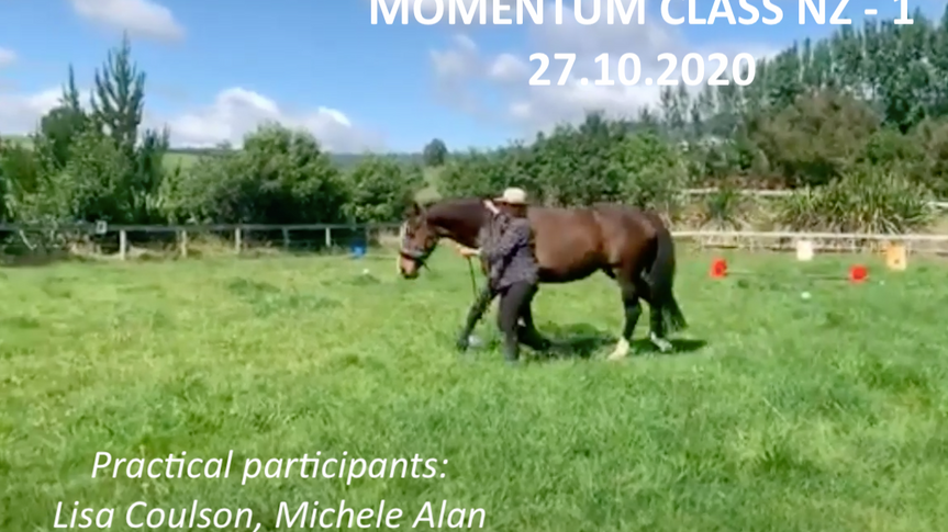Momentum classes NZ