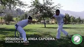 Sequencia 2 Anga Capoeira