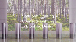 Biophilic Design Connects Architecture to Nature