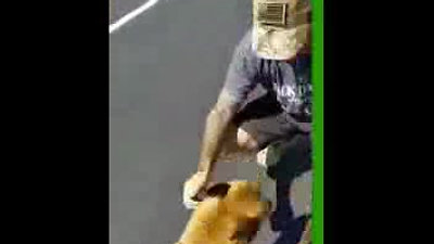 Bandit getting to Derek